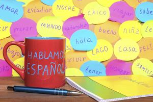 Diferencias entre el espanhol